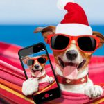 Twelve Tips for a Strong, Healthy and Happy Holiday